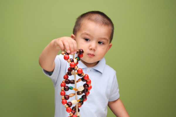 A baby explores a model of DNA