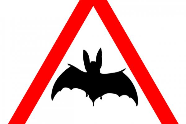 Bat highway code