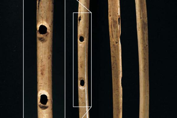 Oldest-known bone flute - Hilde Jensen, copyright University of Tübingen
