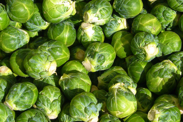 http://en.wikipedia.org/wiki/Image:Brussels_sprout_closeup.jpg...