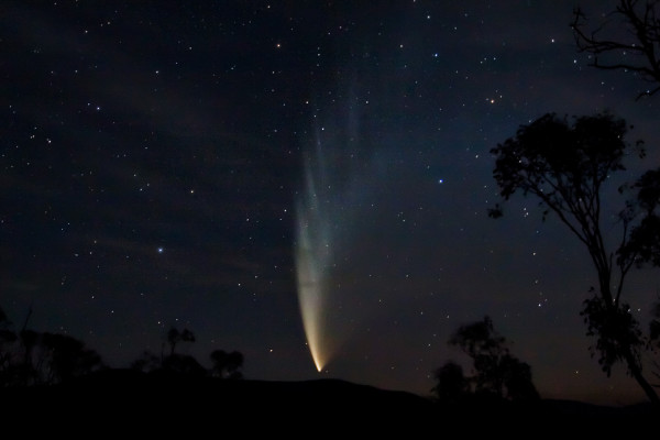 Comet P1 McNaught, taken from Swifts Creek, Victoria, Australia at approx 10:10 pm.