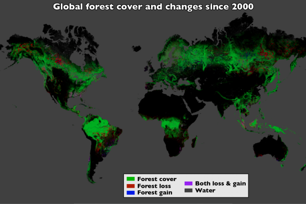 Using Landsat imagery and cloud computing, researchers mapped forest cover worldwide as well as forest loss and gain. Over 12 years, 888,000 square miles (2.3 million square kilometers) of forest were lost, and 309,000 square miles (800,000 square...