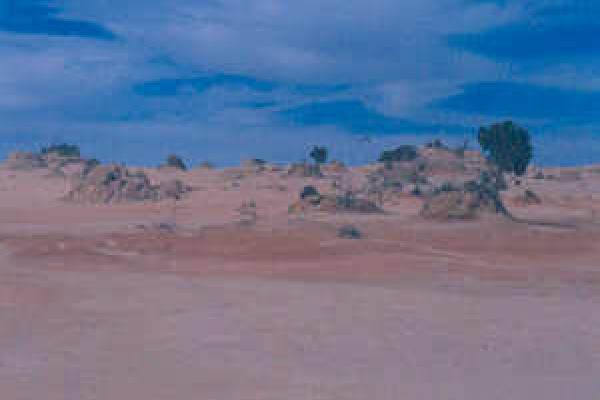 Shore of Lake Mungo