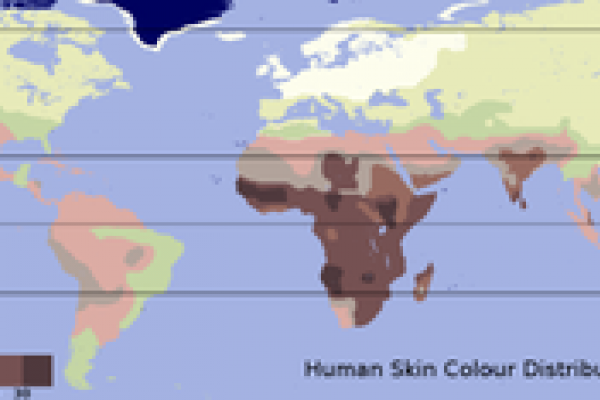 A traditional skin color map based on the data of Biasutti. Data for native populations collected by R. Biasutti prior to 1940.