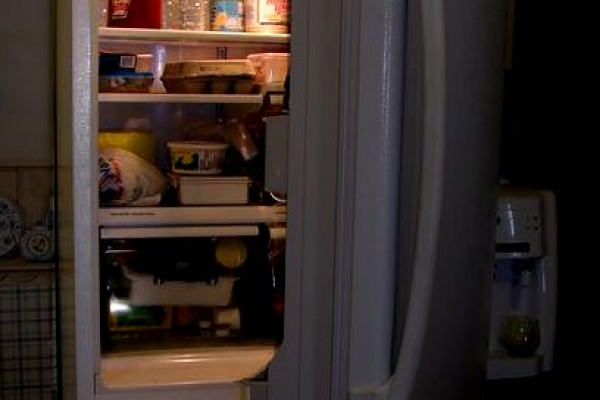 A refrigerator full of food...