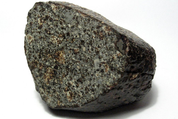 A 700g individual of the NWA 869 meteorite. Chondrules and metal flakes can be seen on the cut and polished face of this specimen. NWA 869 is a ordinary chondrite