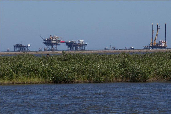 As well as providing a haven for life and a nursery for newborn fish, the Louisiana Wetlands contain massive oil and gas reserves.