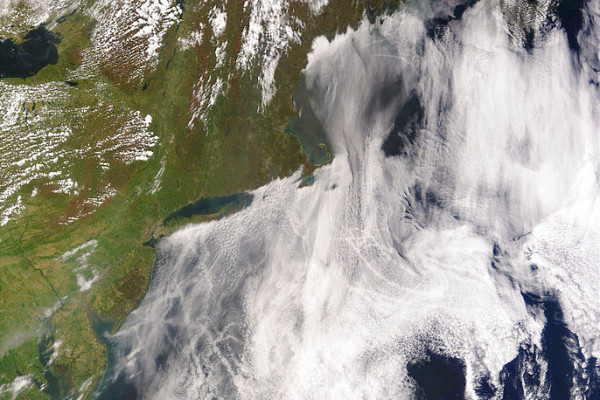 Satellite image of ship tracks, clouds created by the exhaust of ship smokestacks.