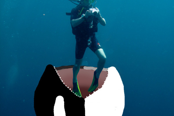 Orca eating diver