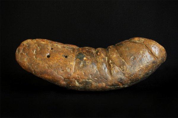 This large fossilized feces specimen is named \The Kraken\.
