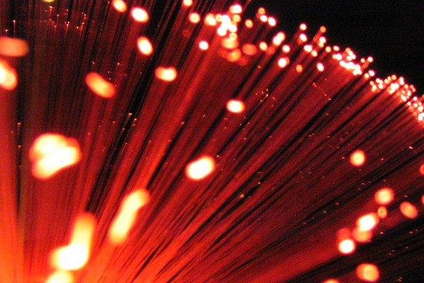 A group of optical fibres.
