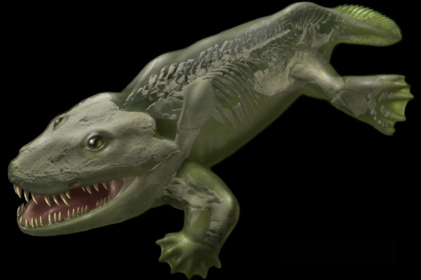 A life reconstruction of the early tetrapod Ichthyostega from the Late Devonian of East Greenland