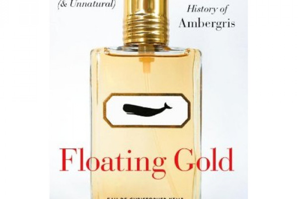 Floating Gold by Christopher Kemp cover