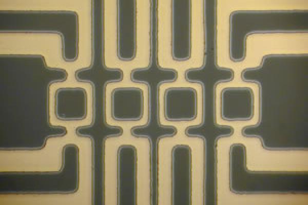 4 Squid superconductors