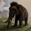 Artist's impression of a woolly mammoth.