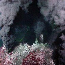 Deep sea hydrothermal vent