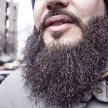 Close-up of a large beard