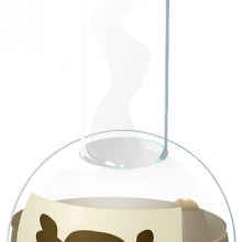 As flask of poison with a skull on the label