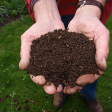 two cupped hands, full of composted soil