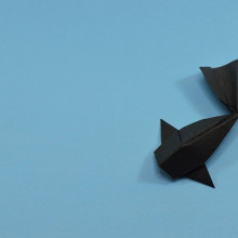 An origami fish sitting on a blue background