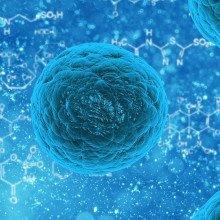 A blue cgi bacteria