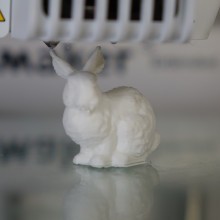 DNA stanford bunny