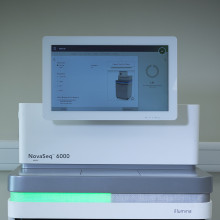 illumina NovaSeq 6000 machine