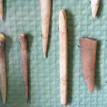 """English: Bone Tools from the """"Transdanubian"""" linear pottery culture period in Hungary, between 5400 BC and 4000 BC. Found near Budapest."""