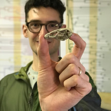 Daniel Field holding up a cast of his discovery, the fossilised bird skull called Wonderchicken.