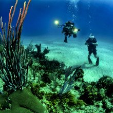 Deep-sea divers