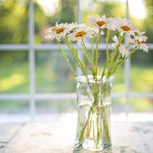 sun shining through a window with flowers in a vase