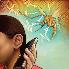 Mobile phones can identify mosquitoes by the sounds of their wingbeats