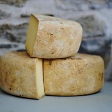 Blocks of cheese