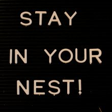 Sign saying STAY IN YOUR NEST