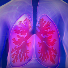 CGI Lungs
