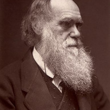 A Woodburytype carte de visite photograph of Charles Darwin, published by John G. Murdoch.