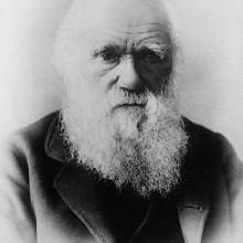 Charles Darwin, from a photograph by Elliott & Fry.