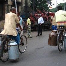 Milk churns being carried on bicycles, Kolkata, India.