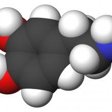 Dopamine 3d molecule