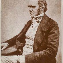 Photograph of Charles Darwin c. 1854