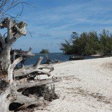 Beach, Desert Island