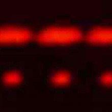2-slit (top) and 5-slit diffraction of red laser light