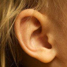 Ear by Travis Isaacs