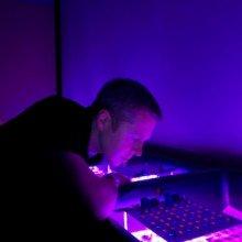 Plants thrive on UV light. Jason Wargent is trying to understand how. Photo credit: Warren Jones