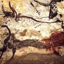 Cave painting of auroches (''Bos primigenius primigenius'') in Lascaux, France.
