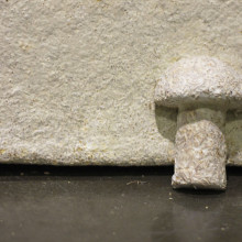 Ecovative's Mushroom Material