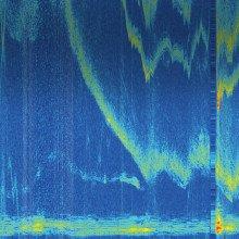 Porpoise Sonar System
