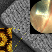 This pinpoint-sized photovoltaic chip (upper right corner) is implanted under the retina in a blind rat to restore sight. The center image shows how the chip is comprised of an array of photodiodes, which can be activated by pulsed near-infrared...