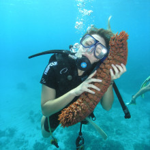 Sea cucumber snuggle - Scuba diving on the Great Barrier Reef off the coast of Australia