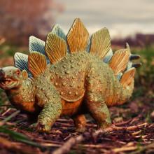 Illustration of Stegosaurus genders